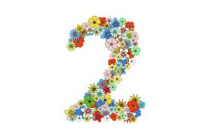 Numerology: Number 2