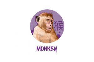 Love Chinese Horoscope: Monkey