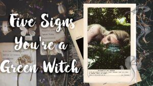 5 signs you are a Green Witch for the Wondering Witch | What kind of Witch are You?