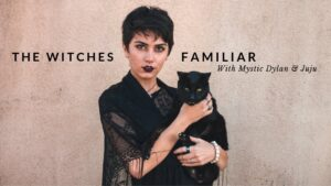The Witches Familiar with Dylan || Coven Craft