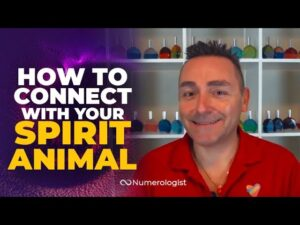 Connect With Your Spirit Animal!