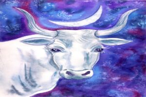 Taurus Zodiac Signs and the Holidays