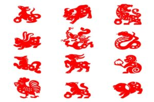 Chinese Astrology Correspondences