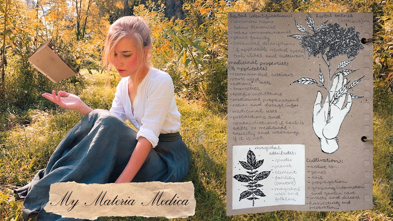 How a Green Witch Profiles Herbs    My Materia Medica Entries